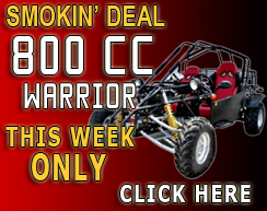 800cc Warrior Go Kart For Sale